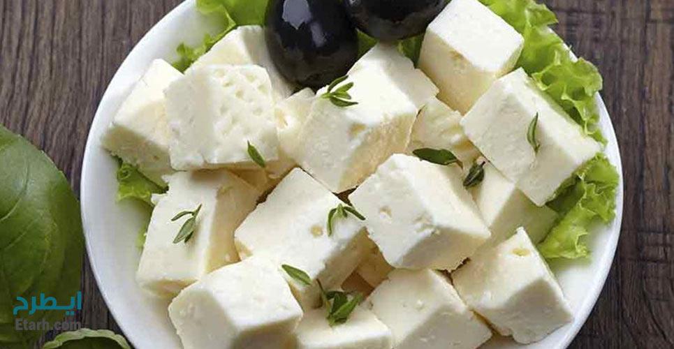 طرح تولید پنیر UF