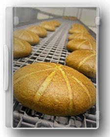 راهنمای صنایع نان صنعتی