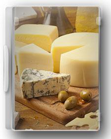 راهنمای صنایع تولید پنیر