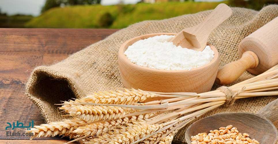 طرح تولید انواع آرد