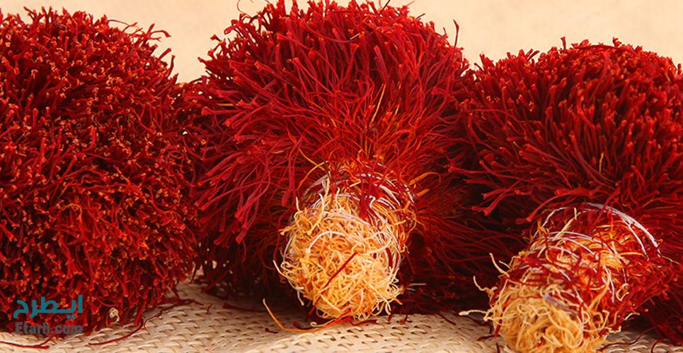 طرح تولید پودر زعفران