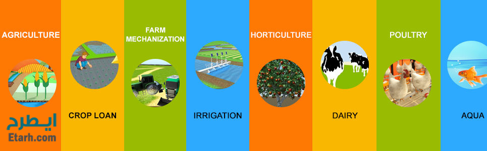 طرح توجیهی کشاورزی