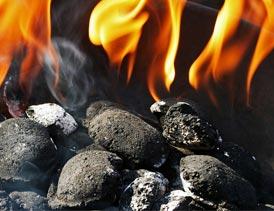 طرح تولید زغال بریکت