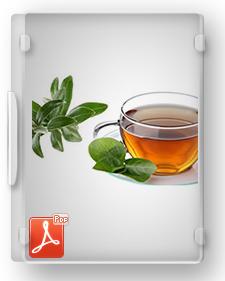 طرح توجیهی تیپ تولید تهیه چای از برگ درخت زیتون