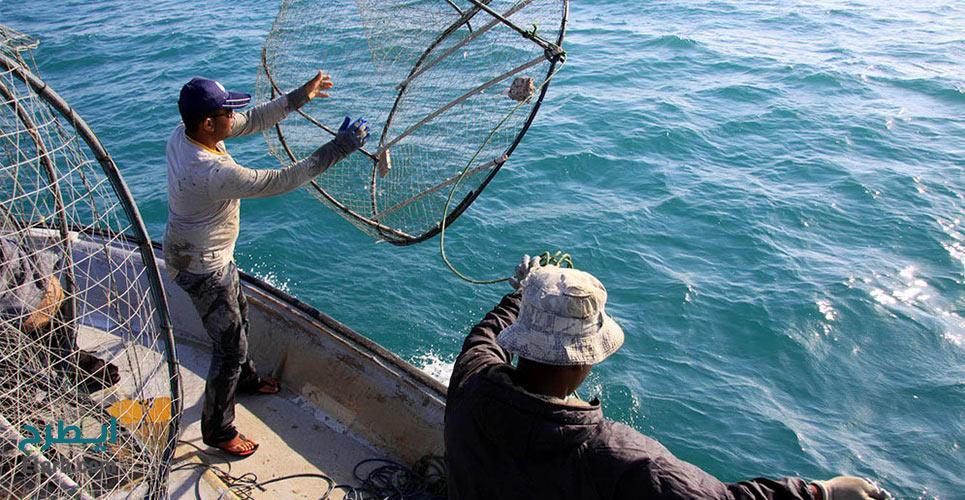 طرح تولید انواع تور و سبد ماهیگیری PP
