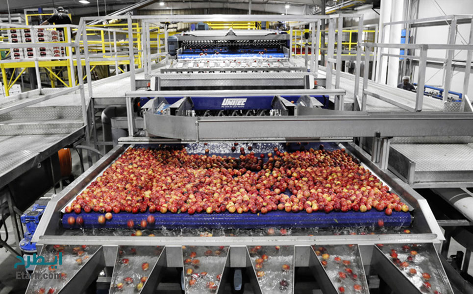 طرح-تولید-کمپوت-میوه-2
