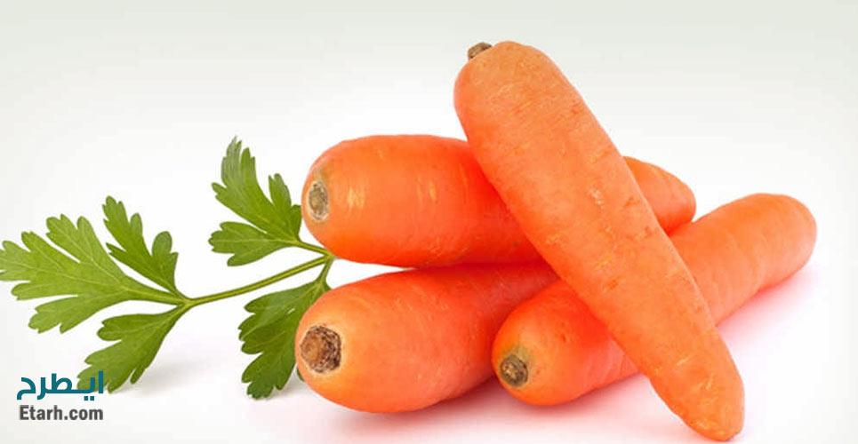 طرح تولید مشتقات هویج