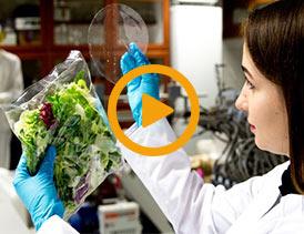 تولید زیست پلاستیک از پسماند حبوبات
