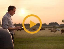 رفاه-بیشتر-دامدارها-در-مزرعه-های-هوشمند-اروپا
