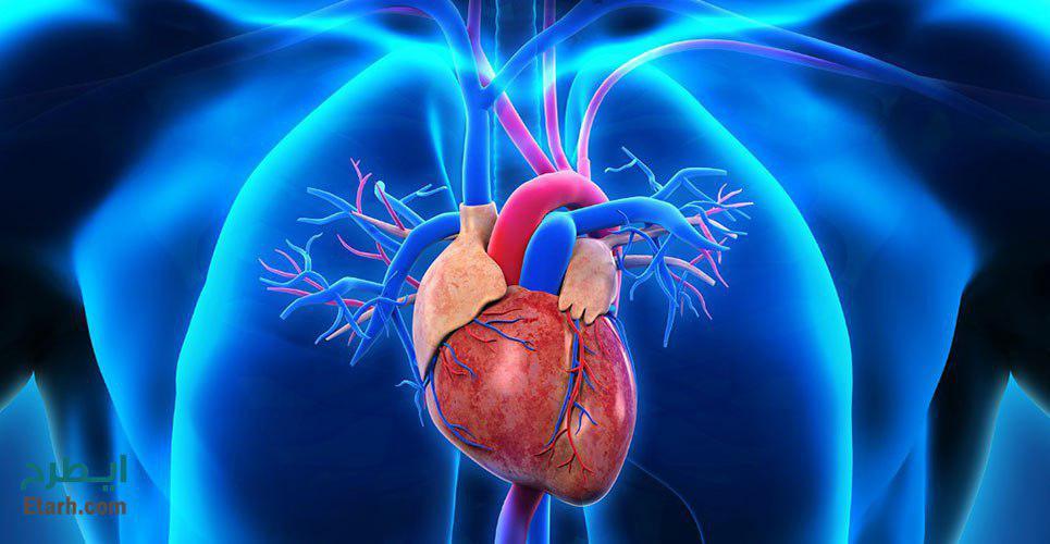 طرح تولید دستگاه محرک ماهیچه قلب