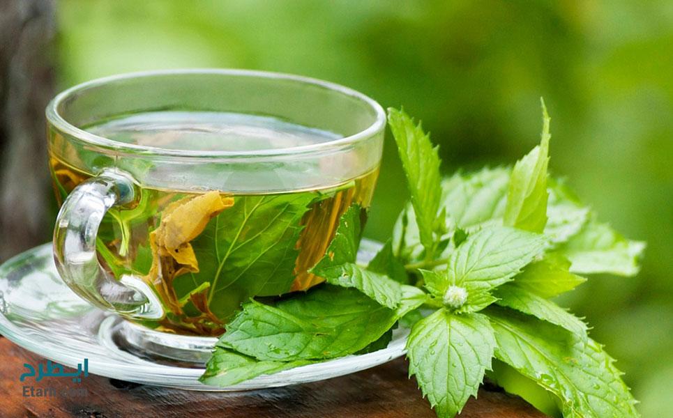طرح تولید کافئین از ضایعات چای (3)