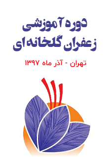 دوره حضوری آموزش کامل و تخصصی کاشت، داشت، برداشت زعفران به روش ایروپونیک بصورت عملی و تئوری - تهران