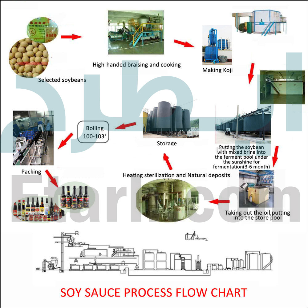 خط تولید سس سویا
