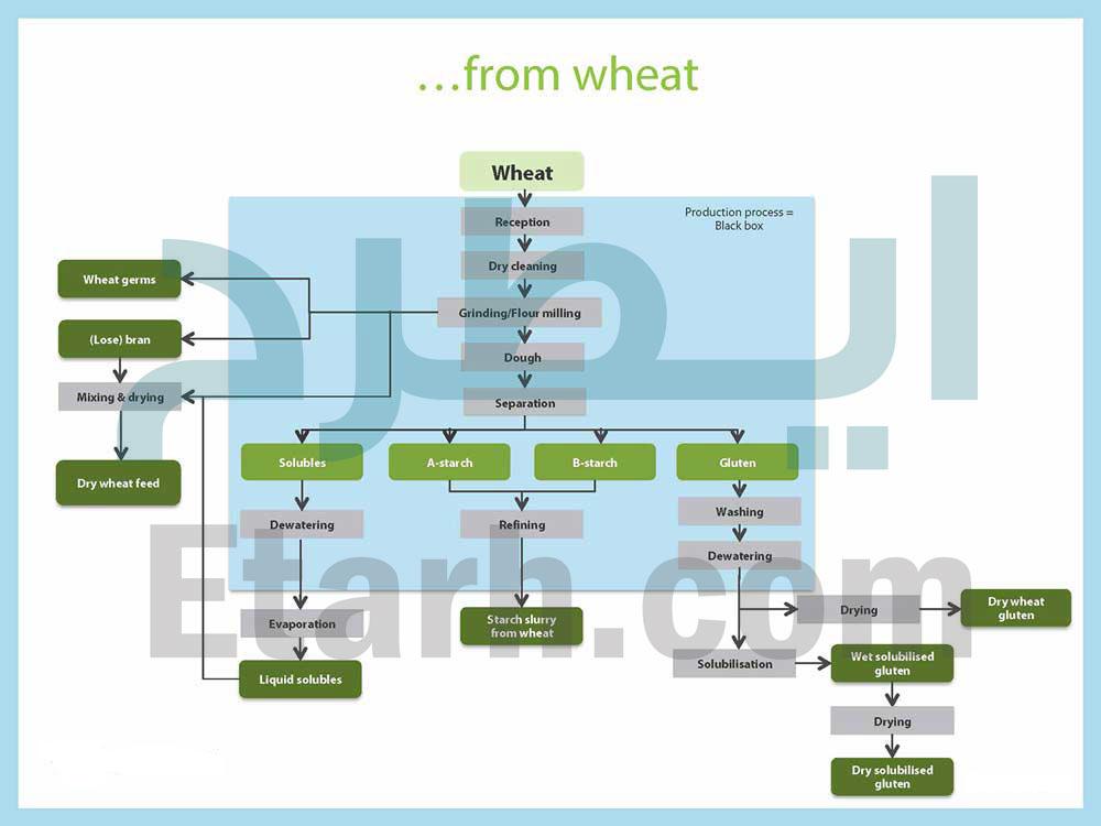 خط تولید نشاسته از گندم