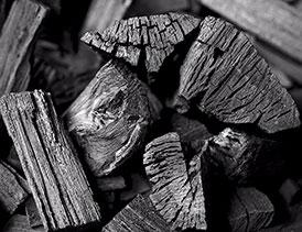 خط-تولید-زغال-چوب-3