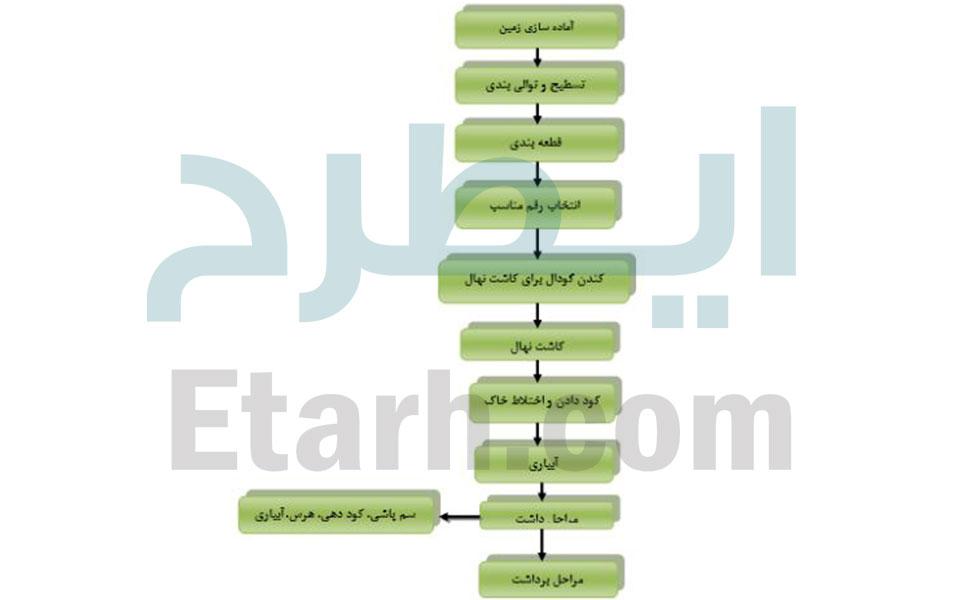 طرح-تولید-باغ-ارگانیک-12