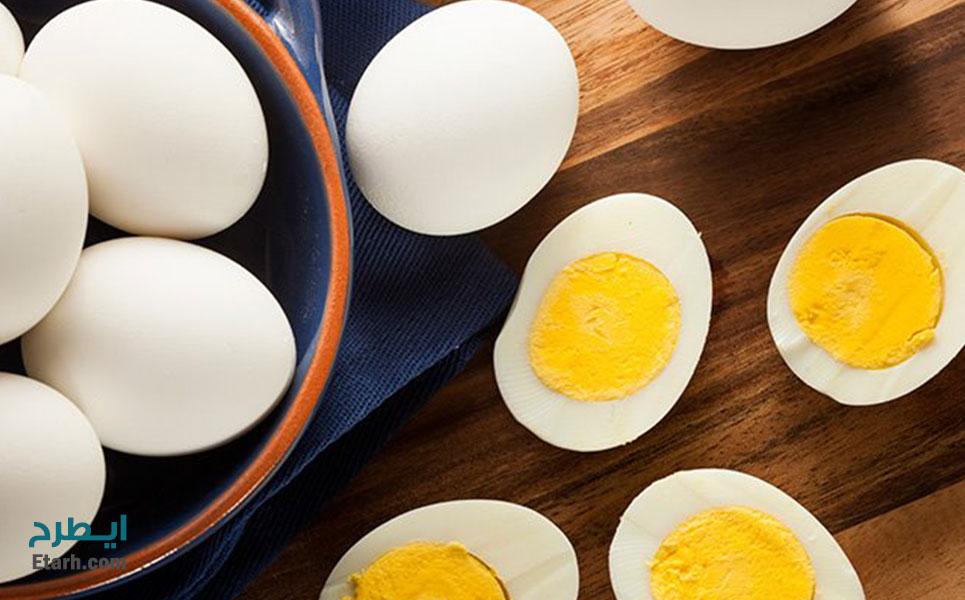 طرح تولید فرآورده های تخم مرغ (1)