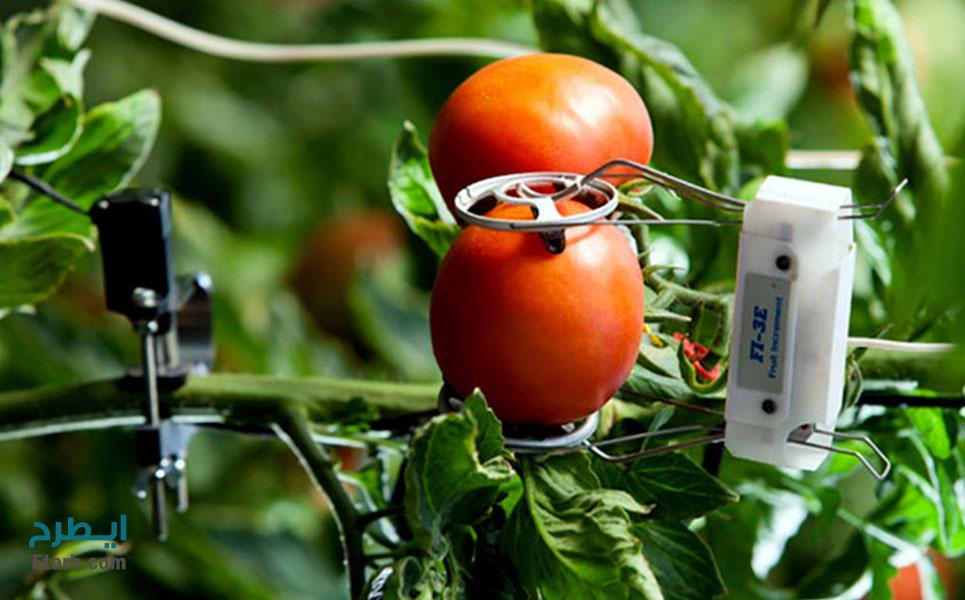 طرح احداث کشاورزی هوشمند (2)
