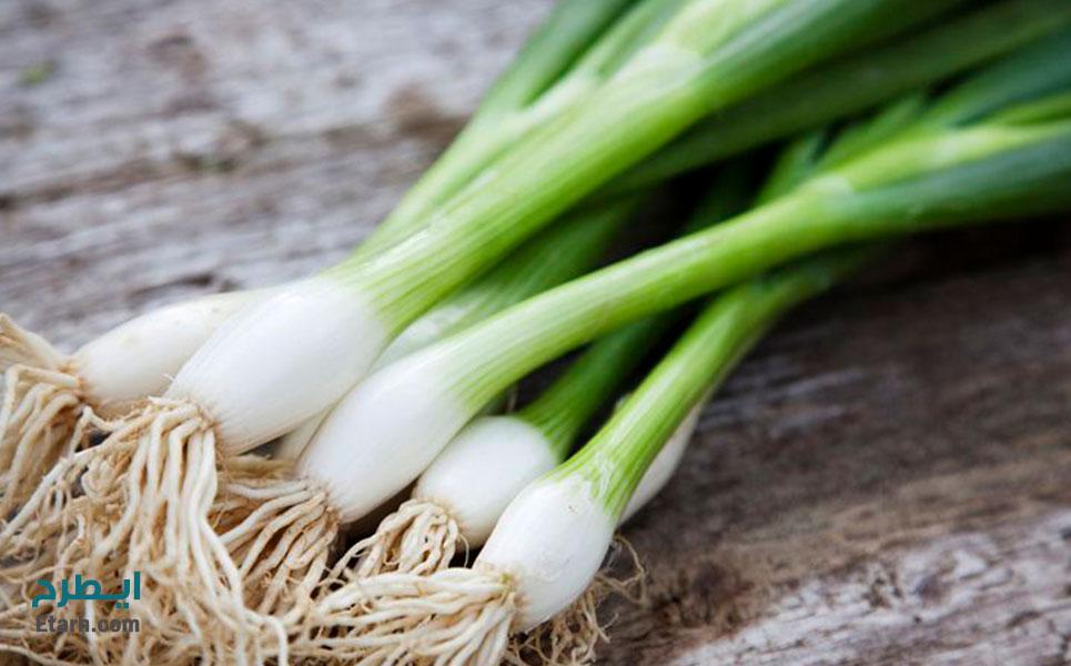 طرح تولید سبزیجات در گلخانه (2)